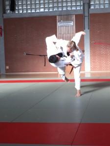 Judo und andere Kampfkünste bietet die Dijk Laibstadt